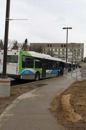 Picture of Guelph Transit Bus in U of G Bus Loop